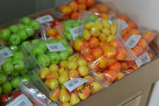 Муляжи фруктов -фассовка
