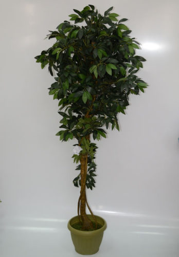Дерево Олива на искусственном стволе