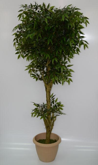 Искусственное дерево Акация 2метра