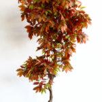 Искусственное дерево «Олива» на натуральном стволе.