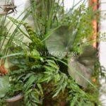 Картина из искусственных растений в багетной раме 60*80 см купить в интернет магазине в Челябинске . (ЦЕна, ФОТО)