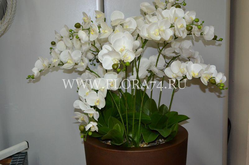 Белая латексная орхидея