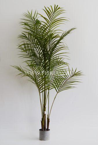 пальма, искусственное дерево, оформление помещения