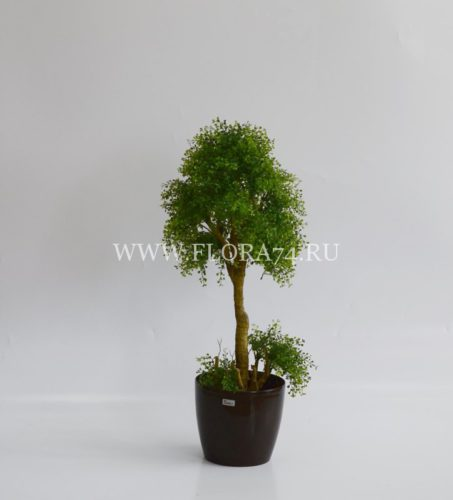 искусственное растение, оформление интерьера