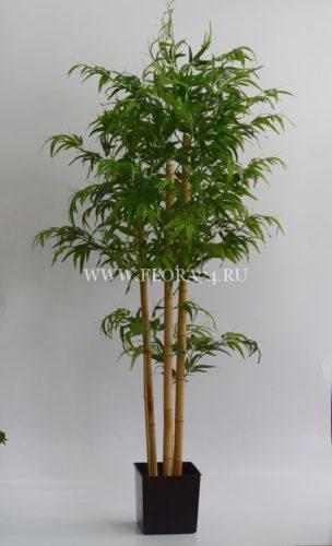 искусственное дерево, бамбук, оформление интерьера