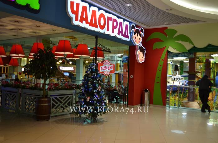 Чадоград Уфа