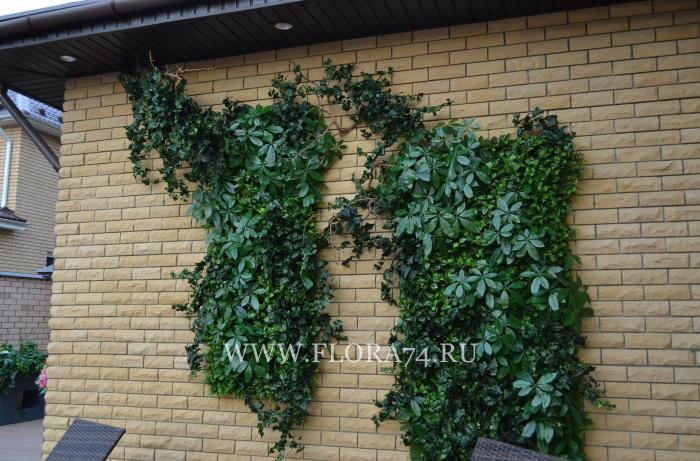 Фрагмент вертикального озеленения.