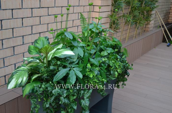 Зелёные искусственные растения.