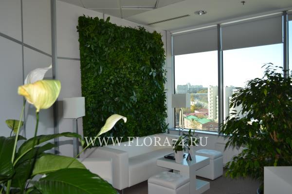 Вертикальное декоративное озеленение.