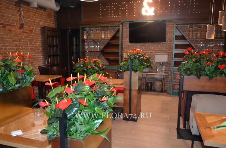 Декор для ресторана и кафе.