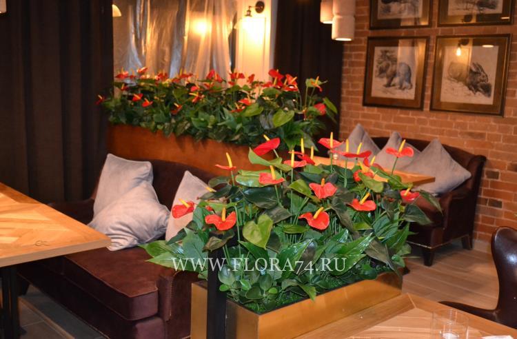 Декор для ресторана и отеля.