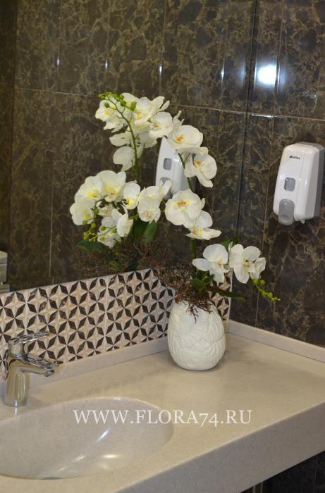 Силиконовые орхидеи.