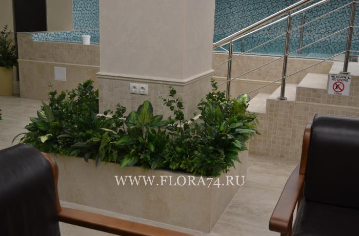 Цветы и растения для декора.