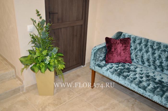 Высококачественные растения для декора.