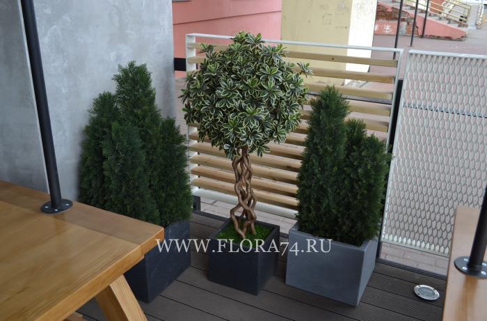 Искусственные растения в ресторан.