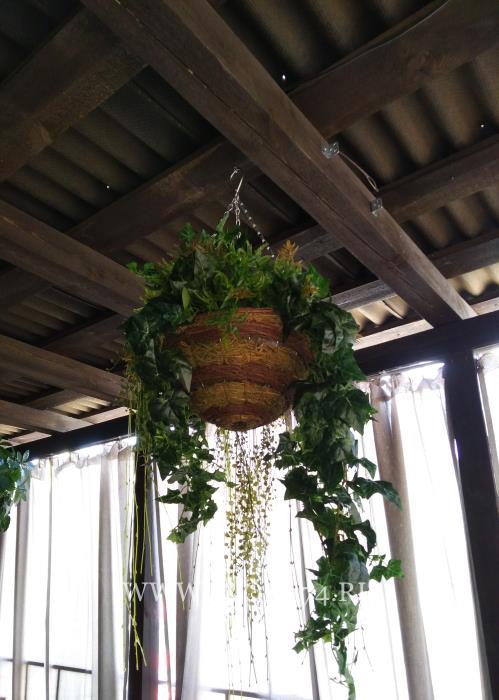 Искусственные свисающие растения.