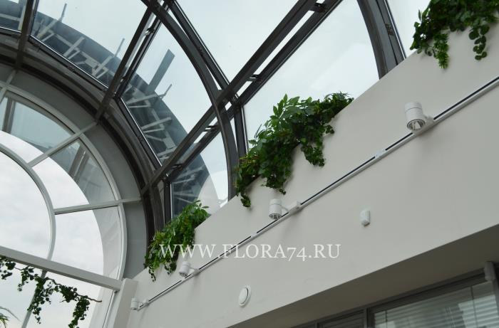 Искусственные растения в офис.