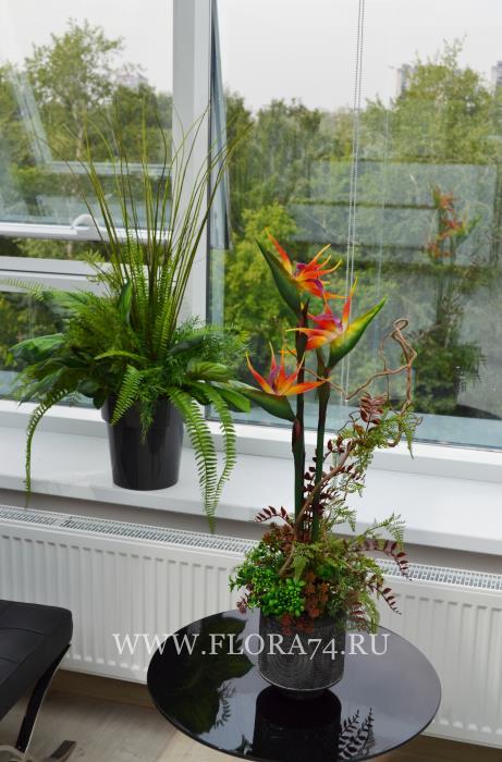 Ботанические копии растений.