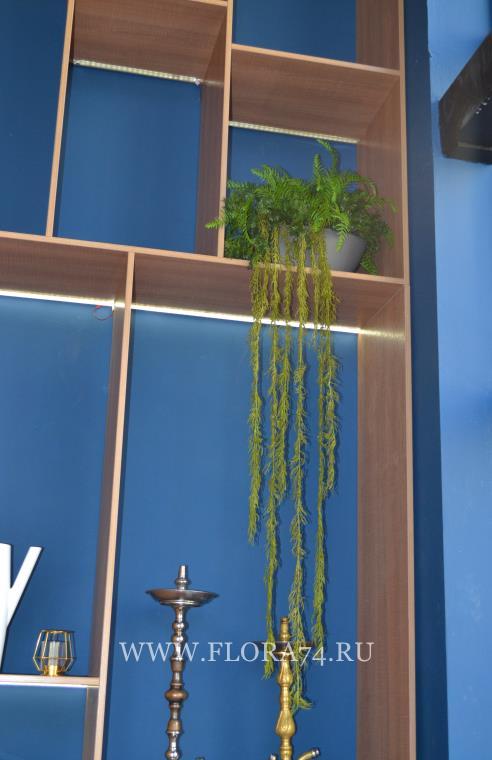 Искусственны растения.