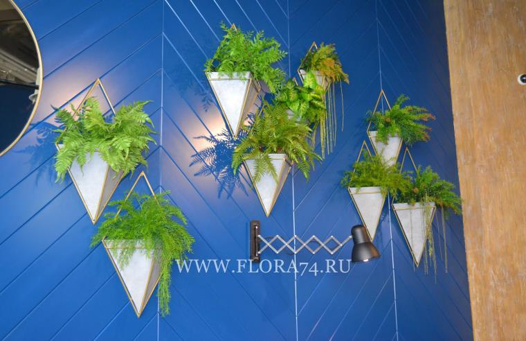Настенные композиции из растений.