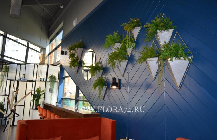 Растения для флористического декора.