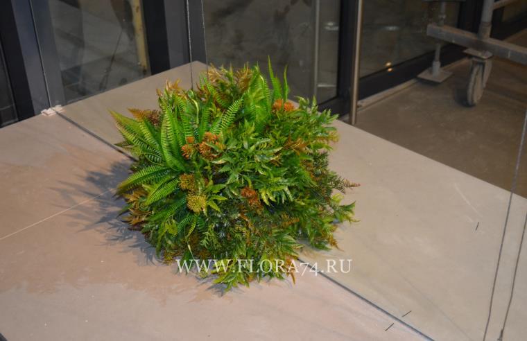 Искусственные растения на зеркале
