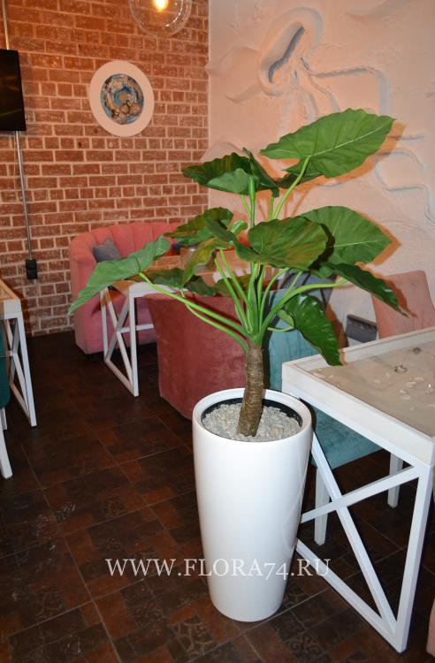 Искусственные растения - копии.