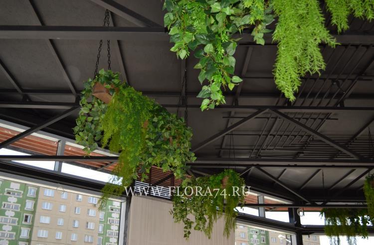 Декоративное озеленение